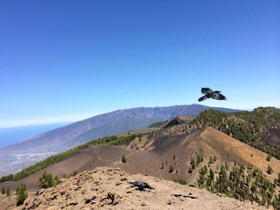 ruta volcanes a tu aire