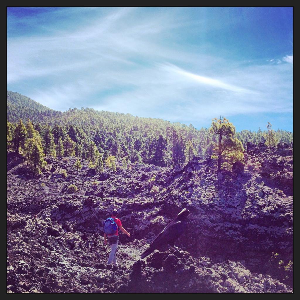 volcan bodega caminata con guia