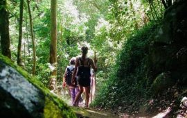 senderismo trekking bosque encantado